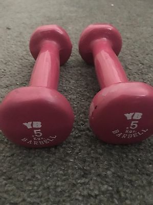 x2 Pink 5 Kilo Barbell Excerise Weight