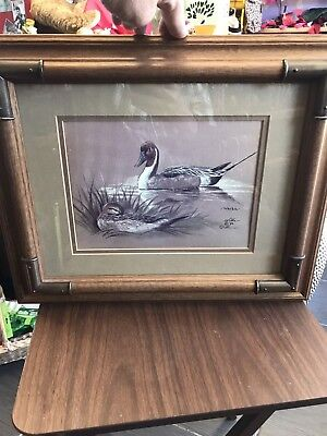 Wilke 1982 Pintail Ducks In Pond Wall Hanging Local Pick Up