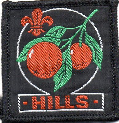 NSW scout badge   HILLS