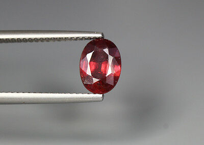 1.79 Cts_Unique Collection_100 % Natural Reddsih Pink Rhodolite Garnet_Sri Lanka
