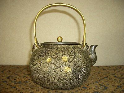 Tetsubin Iron Tea kettle (116)