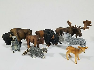 Schleich lot of 8 North American bison raccoon moose wolf fawn