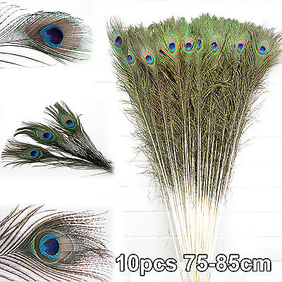 10pcs 75-85CM Natural Peacock Eye Feathers For Wedding Party Decor DIY Craft