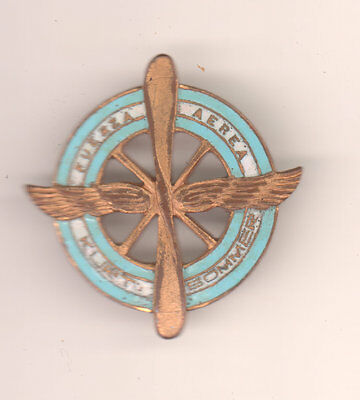 Argentina Foreign insignia badge pin back