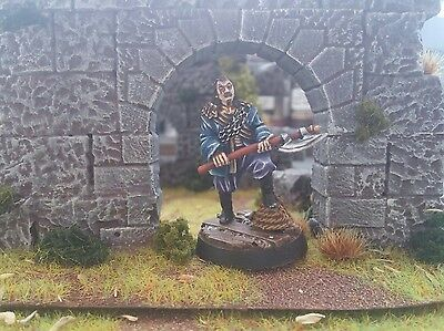 Warhammer Lord Of The Rings. Capitán Corsarios Umbar, de metal. Pro painted LOTR