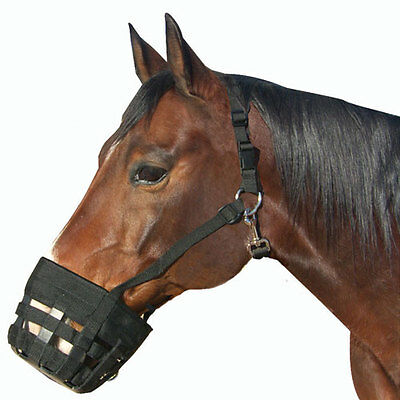 Best Friend Deluxe Grazing Muzzle with Breakaway Halter and Spare Buckle