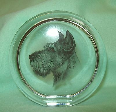 Realistic SCHNAUZER DOG Terrier GLASS Sun catcher PAPERWEIGHT   nicely detailed