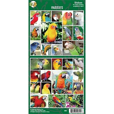 Sheet Of 27 Parrot Stickers - 27x Bird Lovers Gift Personalise Decorate