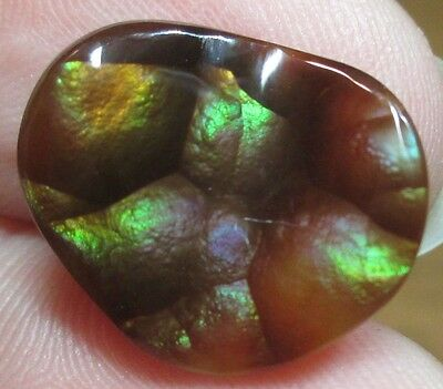 MEXICAN Fire Agate Gemstone Free form Natural Multicolored 15x13