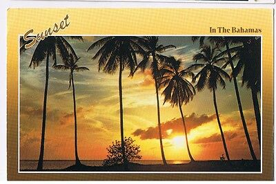 Sunset In The Bahamas Reflected In The Clear Waters - Postcard #  376004