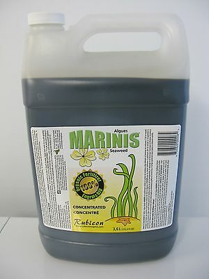 NEW! Marinis Seaweed 100% (2-2-7) concentrated liquid seaweed Marinis 3.6L