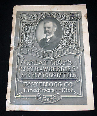 Antique Vintage Rm Kellogg's Strawberry Fruit Seed Catalog Three Rivers Michigan