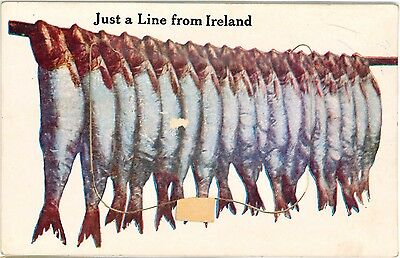 IRELAND EIRE Just a Line FISH Emerald Isle Vintage Multiview PC c1930