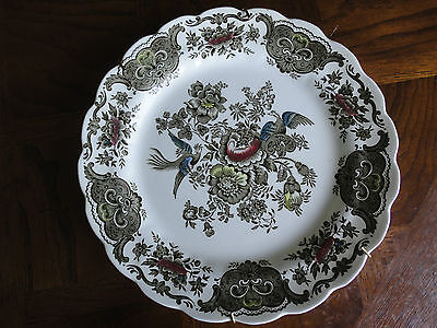 "Ridgway Windsor Hand Engraving 10"" Dinner Plate, Colourful Bird & Flower, No Tax"