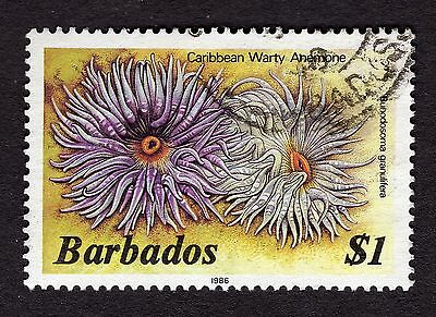 1986 Barbados $1 warty anemone FINE USED R31866