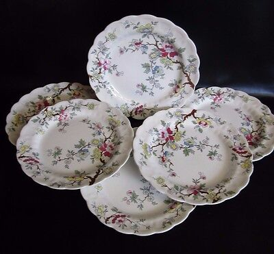 """Booths Chinese Tree  - 6 X 10.5"""" Dinner Plates"""