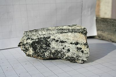 LEWISIAN GNEISS,COLLECTED FROM THE ISLE OF LEWIS, SCOTLAND  (133g)