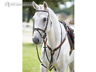 Breastplate with Martingale- Full *Brown or Black*