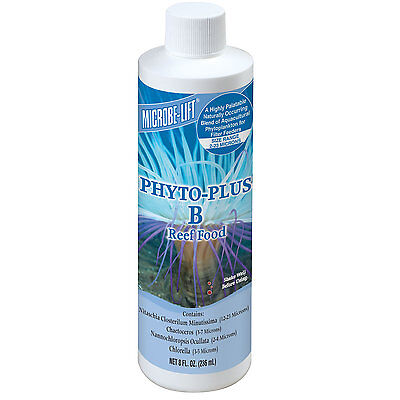 MICROBE-LIFT Phyto - Plus B 236 ml