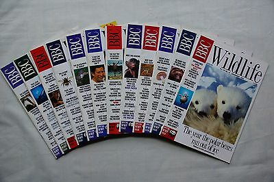 Lot collection vintage BBC Wildlife Magazines 12 Months set from 1992