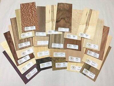 25 pc Wood Veneer Mixed Pack - Identification Kit Domestic & Exotic Raw/Unbacked
