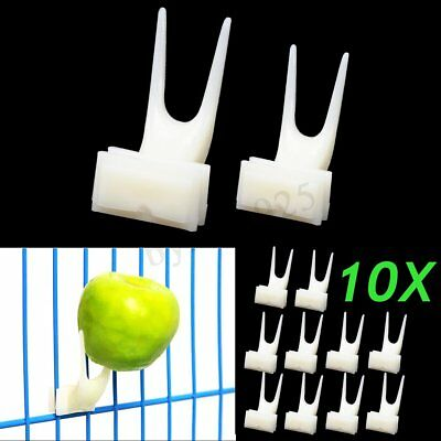 10x Pet Parrot Fruit Fork Birds Food Holder Feeder Device Pin Clip Budgie Canary