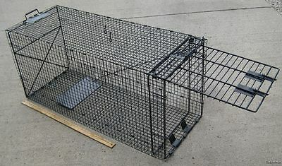 "Super Size Folding Trap 50""x 24 x19"" Ideal to capture Dog, Coyote, Bobcat.  035b"