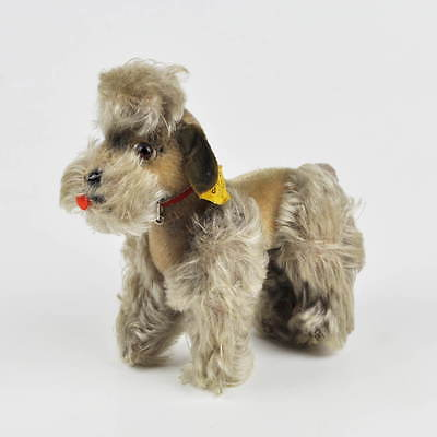 Steiff Snobby (5314) - Pudel - weiss - alt - Hund - dog poodle - 14cm - #1