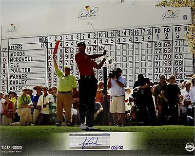 Tiger Woods Hand Signed Autographed 8x10 Photo With Binder UDA xx/100