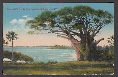 Postcard Alaki Tonga the tree where Captain Cook first landed in 1777