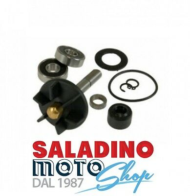 Kit Revisione Pompa Acqua Top Aprilia Derbi Gilera Piaggio 50 2T Aa00796