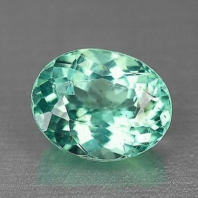 1.31 Cts Dazzling Top Quality Neon Green Color Natural Apatite Gemstones
