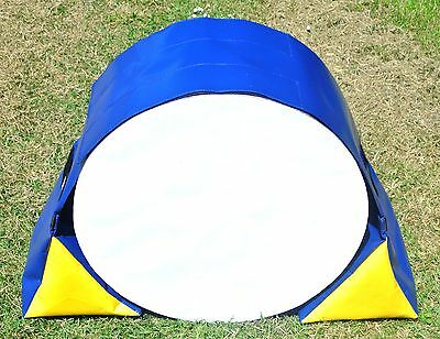 Dog Agility,Training Tunnel Sand Bags Adjustable,Indoor,Outdoor Apparatus,UV,PVC