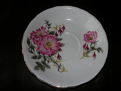 Adderley Vintage English Fine Bone China Pink Rose Floral Tea Saucer