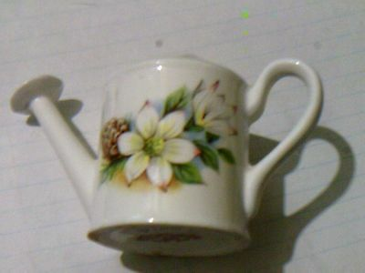 Figurine watering can Royal Straffordshire