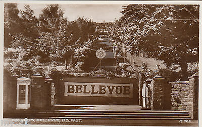 Postcard Belfast Northern Ireland view of The Steps Bellevue RP