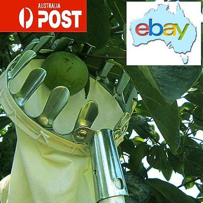 Metal Fruit Picking Catching Tool Apple Orange Garden Tool Australian Stock