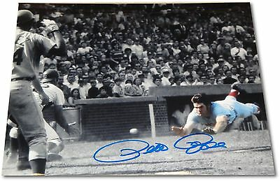 Pete Rose Signed Autographed 8x10 Photograph Sliding Home SAFE In Color + COA
