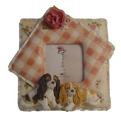 King Cavalier Dog Picture Frame - Trinket Box , Shelf Hook Hanger 3 items