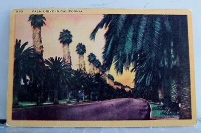 California CA Palm Drive Postcard Old Vintage Card View Standard Souvenir Postal
