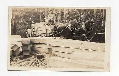 Early Logging Draft Horse Team Cart, Real Photo PostCard, c1915