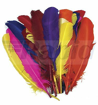 Artstraws Large Quill Style Feathers - 30cm approx, Assorted Colours