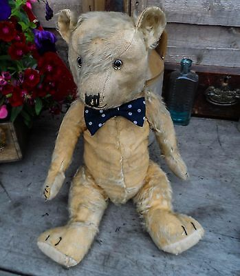 Victor 1930s chiltern jointed mohair Teddy bear 19 inch