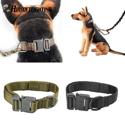 1.0inch Military Tactical Training Large Dog Collar With Metal Steel Buckle