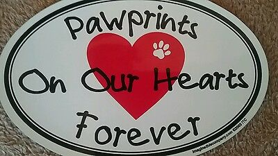 Oval Shaped Pet Magnets: pawprints on our hearts forever Cars, Trucks