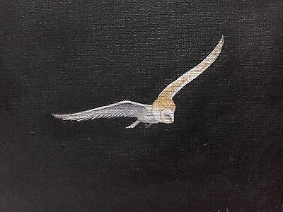 Barn owl. Original signed oil painting. This is not a print