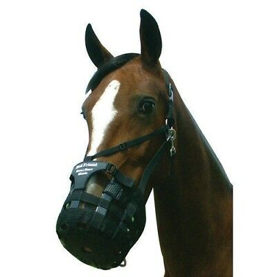 Best Friend Have a Heart Muzzle with Breakaway Halter Prevents Muzzle Escapes