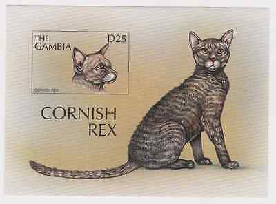 Gambia - Cats, Cornish Rex, 1997 - Sc 1966 S/S MNH IMPERFORATE