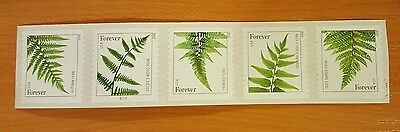 10 Strips of 5 = 50 Forever Stamps