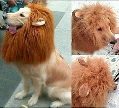 Wig Clothes Lion Cat Dress Costume up-L Ears US with for Xmas Dog Pet Mane Fancy
